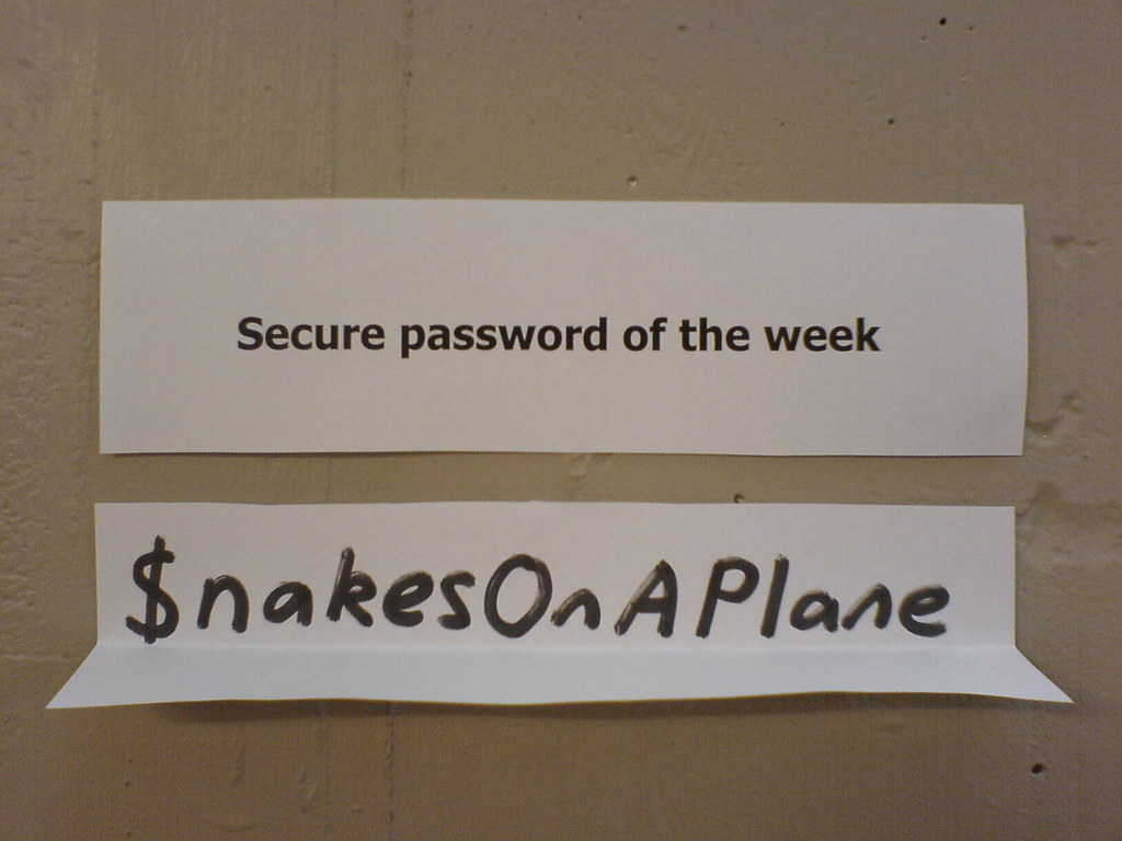 Image showing password $nakesonaplane